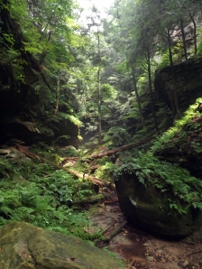 conkle's hollow, hocking hills